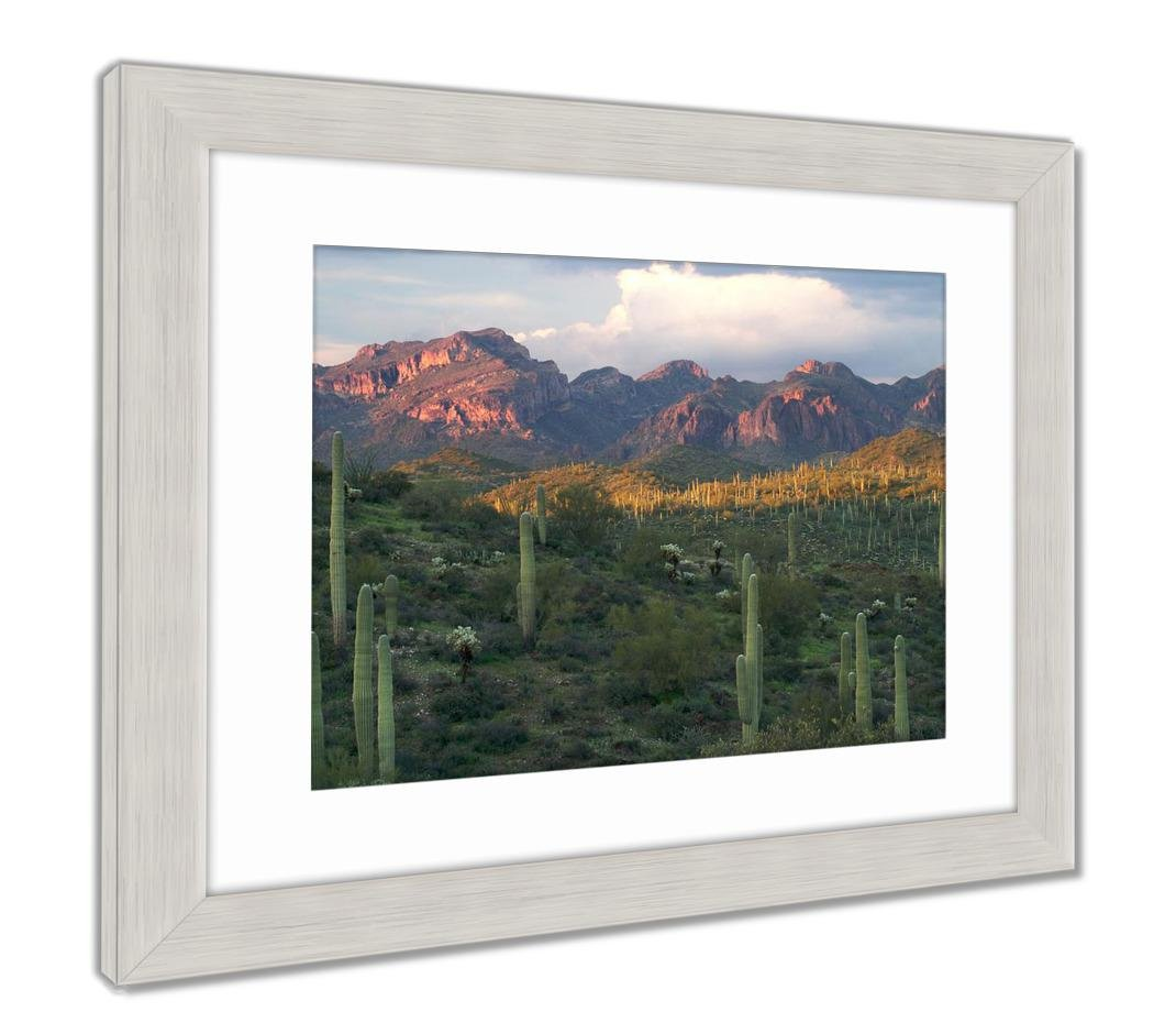 AshleyフレームプリントSaguaros with Sunset Lit Superstition Mountains、壁アートホーム装飾 Superstition、ag6497707 26\ B07CG1R9K7 26