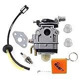 HURI Carburetor with Fuel Line Kit Spark Plug for