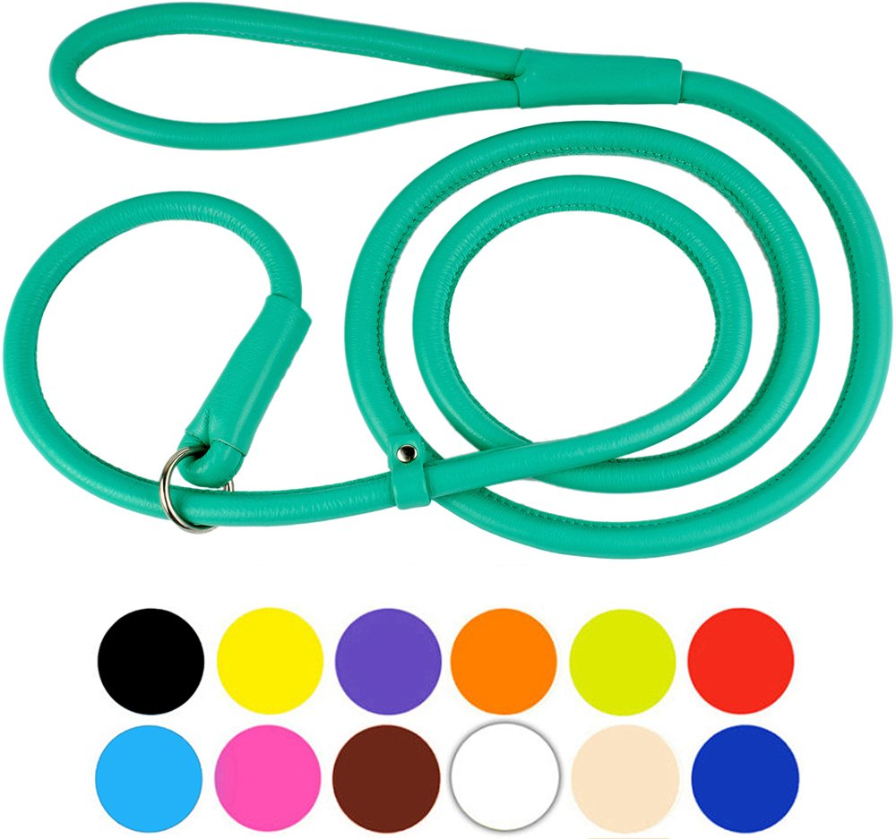 Mint Green XL 6ft Mint Green XL 6ft CollarDirect Rolled Leather Dog Leash 6ft or 4ft, Heavy Duty Slip Lead, Slip Leashes for Small Medium Large Dogs, Round Puppy Leash Female Male Pink Black Brown Red (XL 6ft, Mint Green)