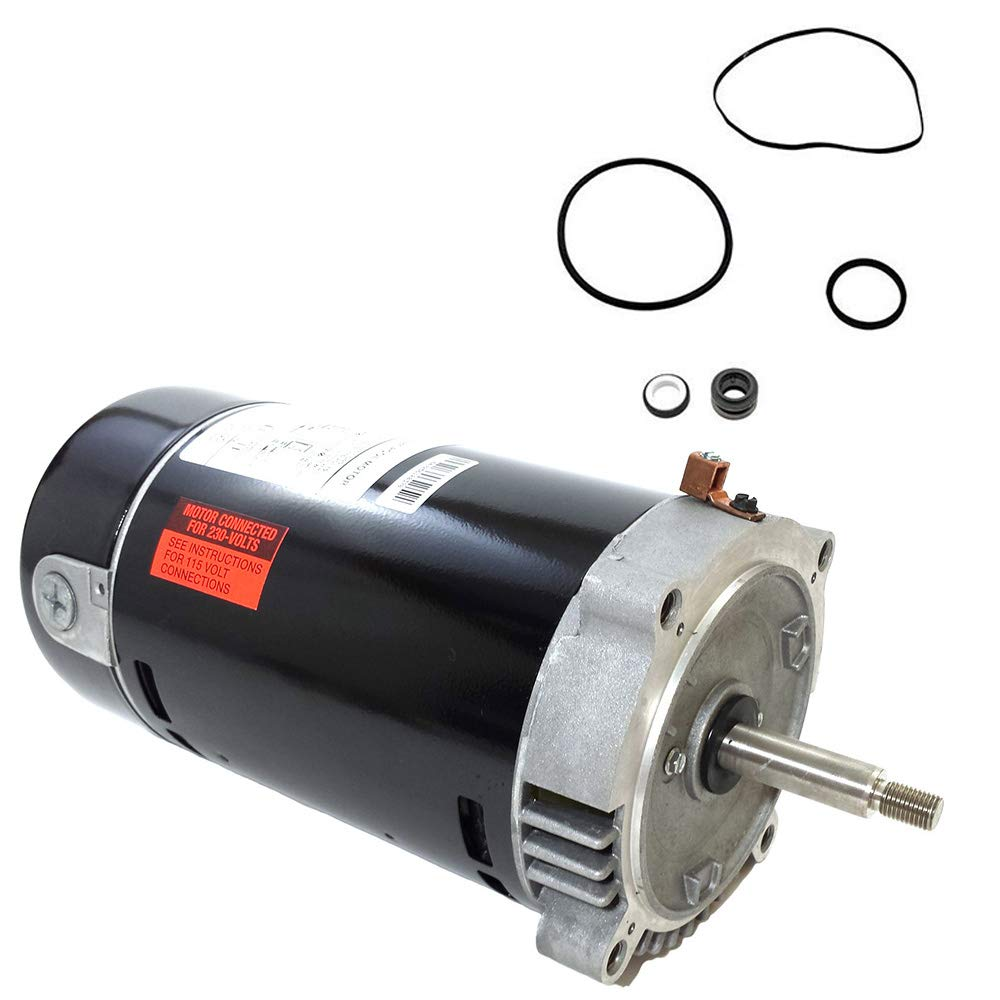 Puri Tech Replacement Motor Kit for Hayward Super II 1 HP SP3007X10AZ AO Smith UST1102 w/GO-KIT-2