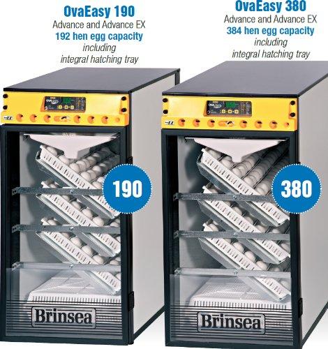 BGB Ova Easy 190 Advance Cabinet Incubators | Community Greenhouse ...