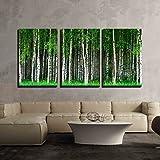 Best Art Groves Of Birch Trees - wall26-3 Piece Canvas Wall Art - Beautiful Swedish Review