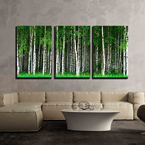 Beautiful Swedish Summer Landscape with Grove of Birch Trees x3 Panels
