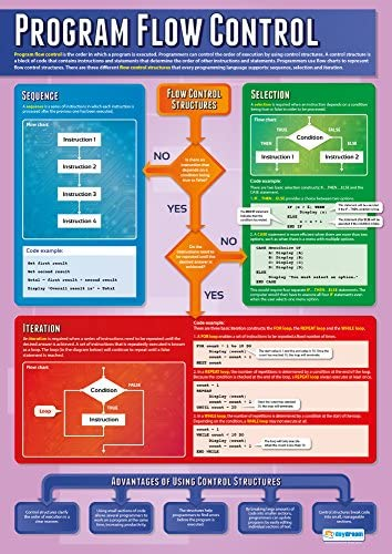 Program Flow Control | Computer Science Posters | Laminated Gloss Paper Measuring 33\u201d x 23.5\u201d | STEM Posters for The Classroom | Education Charts by Daydream Education