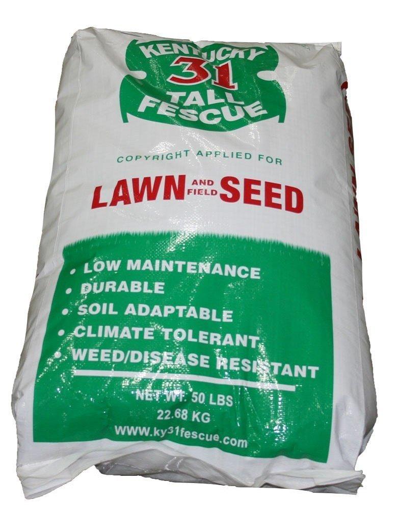 The Dirty Gardener Kentucky 31 Tall Fescue Grass Seed - 50 Pounds