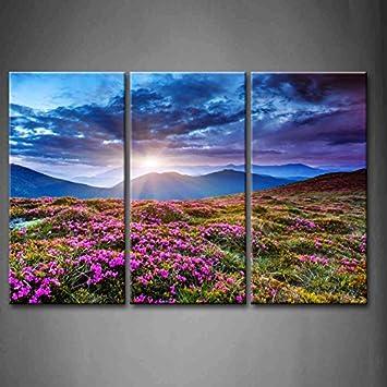 3 Panel Wall Art Blue Sunset Mountains Landscape Overcast Sky Storm Purple  Flowers Carpathian Ukraine Painting