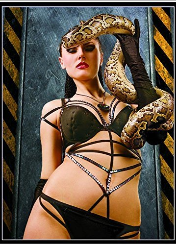 Hot Sexy Pinup Babes Snakes D Animated Lenticular Poster Picture  Different Woman