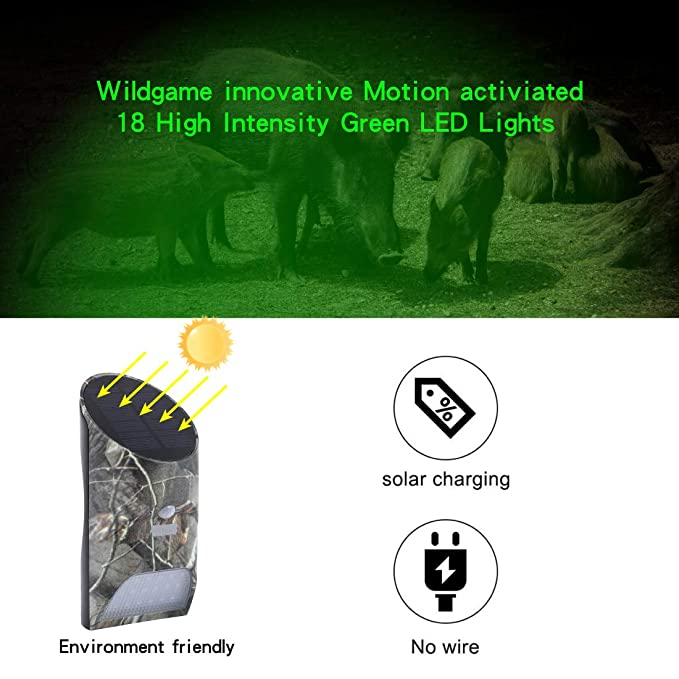 Amazon.com : Vizzlema Feeder Hog Light Outdoor Solar Feeder Light for Hunting with Motion Sensor and Green Light for Game Animal Hunting : Sports & Outdoors