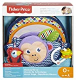 Fisher-Price Monkey Mirror - Best Reviews Guide
