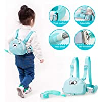 Baby Safety Harness-Toddler Leash Child Anti-Lost Belt Kids Assistant Strap Angel Wings Travel Haress for 1-3 Years Boys and Girls (Teal with Bag)