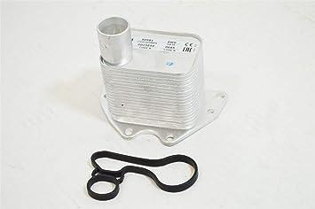 Lsc 55566784: 1.4 Turbo Refrigerador de Aceite de Motor & Junta - Nuevo de Lsc
