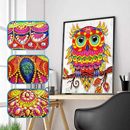 Chenway Diamond Painting,Special Shaped DIY 5D Partial Drill Cross Stitch Kits - Point Drilling Crystal Rhinestone of Picture Animal Serial for Living Room Wall Decor (Color Owl 2) ()