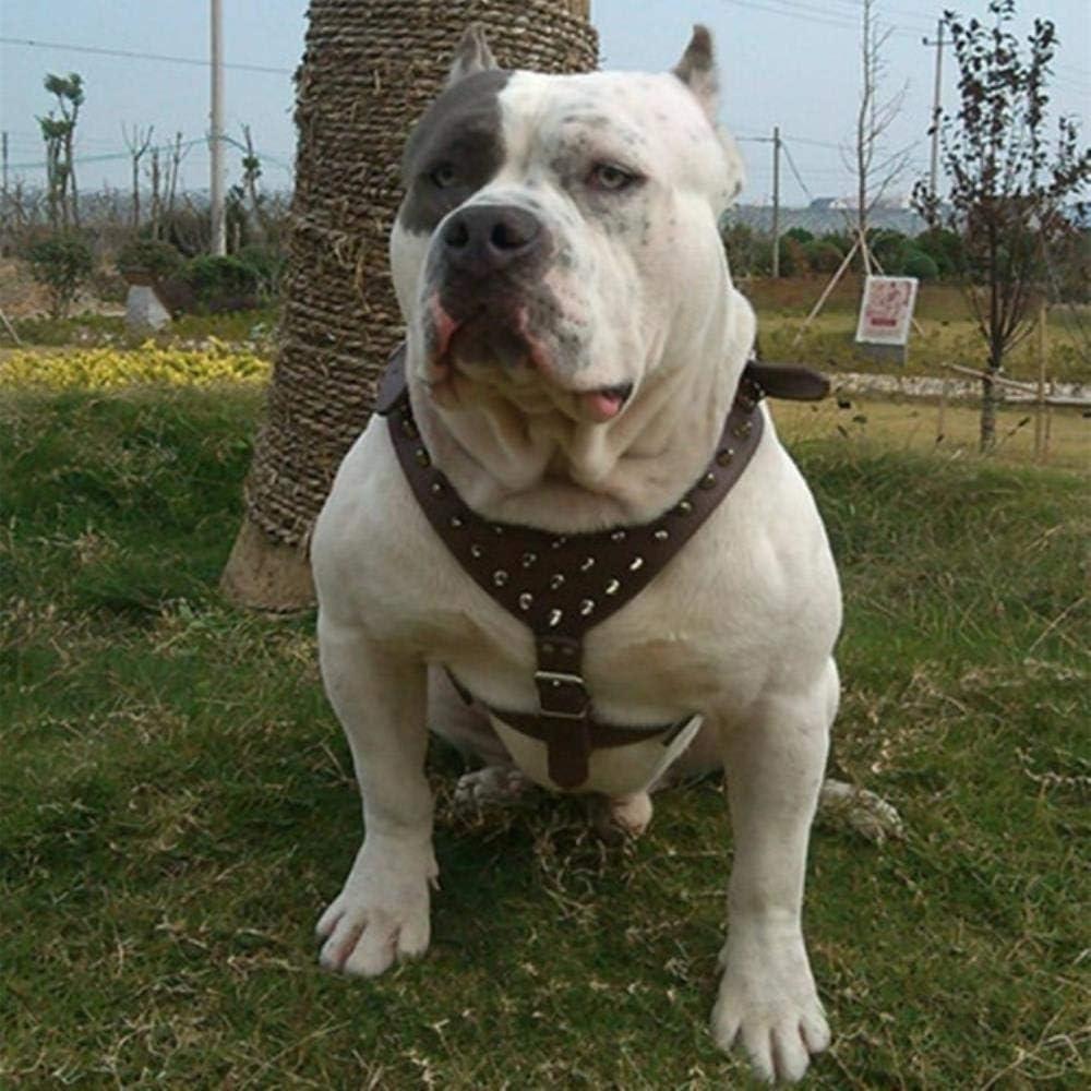 Collar Perro Ajustable Nuevo Collar Remaches con Tachuelas Ajustables PU Cuero Arnés para Mascotas Arnés para Caminar Correa para Pitbull Mastín, Marrón, L