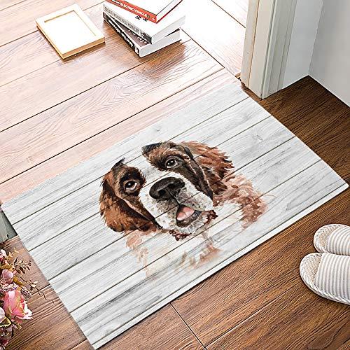 - Door Mat Indoor 20x32 inch Wood Plank Texture Saint Bernard Dogs Doormat for Entrance Way Floor Mat Non Slip Rubber Bathroom Kitchen Rugs