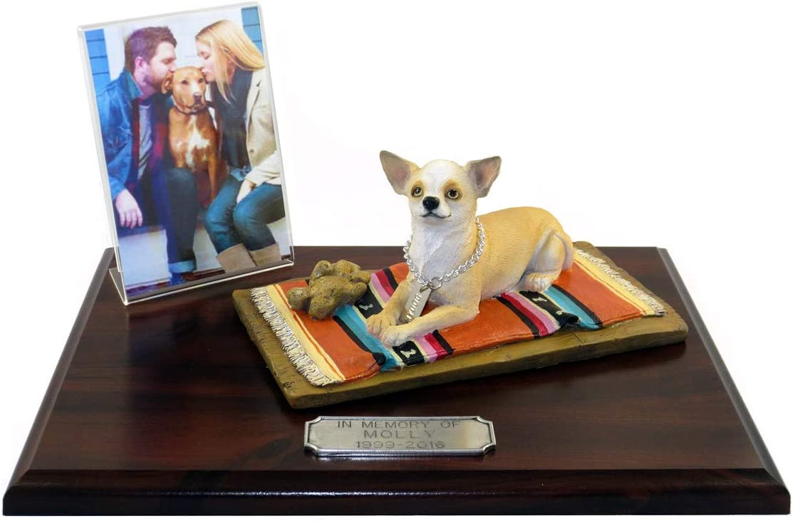 Conversation Concepts Chihuahua White Tan Collection – A Safe Place to Keep Your Best Friend, heavely Place for Your Best Friend, You ll Live Forever My Best Friend, Wooden Box urn for Ashes