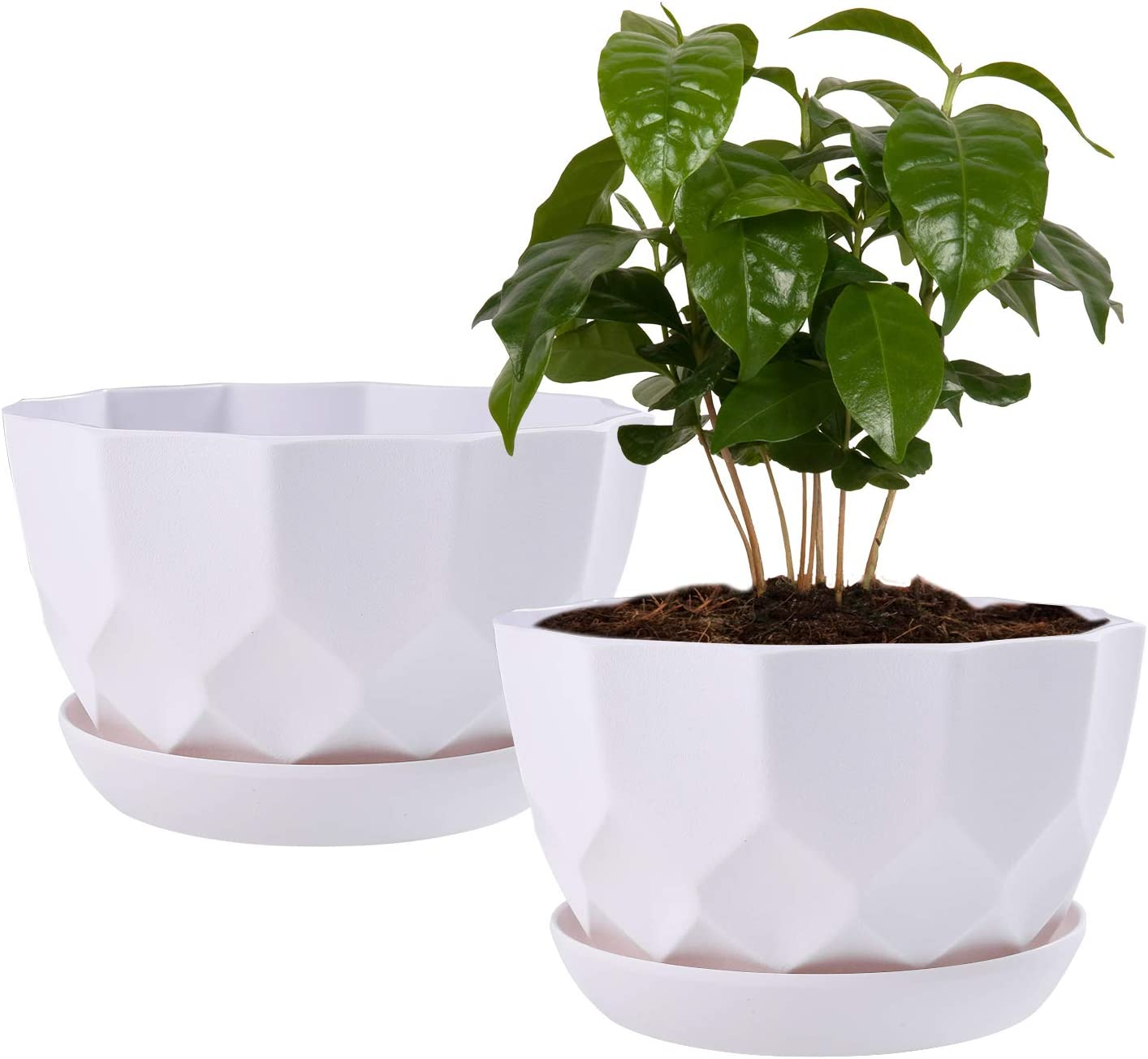 7 Inch Plant Flower Pots Indoor Plastic Planters with Drainage Hole Set of 2 Modern Planting Pots Great for Plants, Herbs, African Violets, Foliage Plants, Crafts Home Decorations (White)