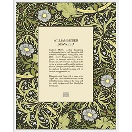 Amazon Large William Morris Seaweed Glass Frame By David