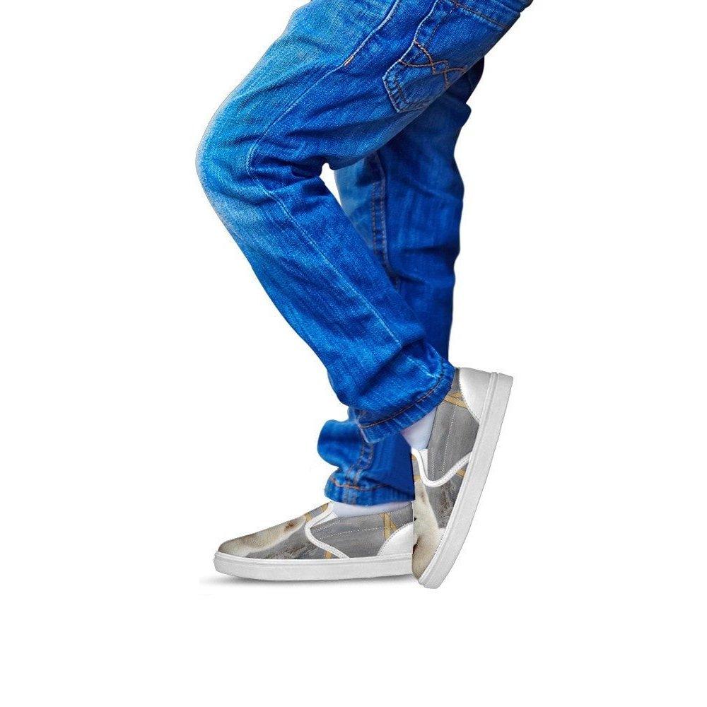 , Gray Kids Slip ONS- Samoyed Dog Print Slip-ONS Shoes for Kids 1 Youth EU32