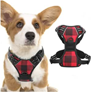 rabbitgoo Dog Harness No Pull, Adjustable Dog Walking Chest Harness with 2 Leash Clips, Comfort Padded Dog Vest Harness with Easy Handle, Reflective Front Body Harness for Small Breeds, Plaid, S