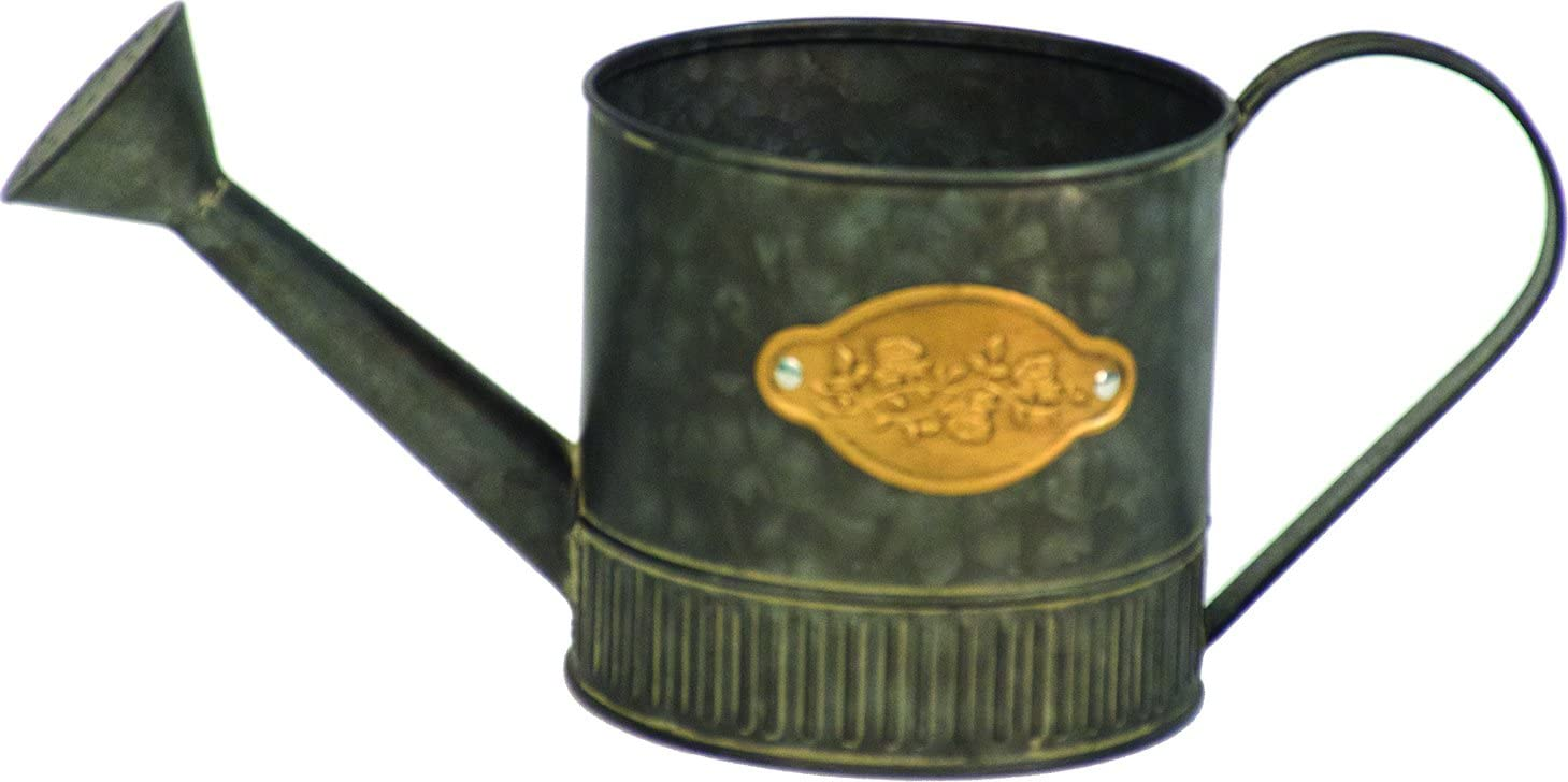 "Harbor Gardens H16A7691 Medallion Collection 5.5"" Galvanized Steel Watering Can with Medallion"
