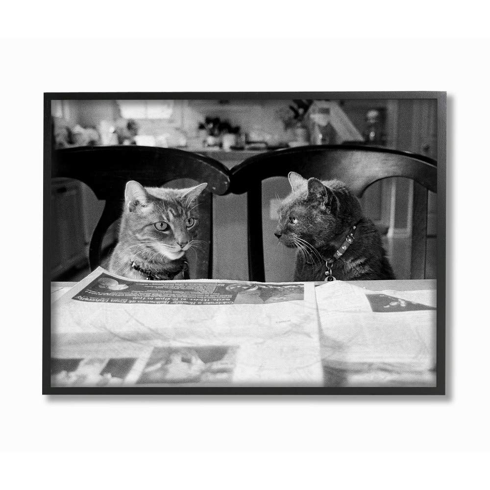 The Stupell Home Decor Collection Black and White Cats Gossiping Before Dinner Photograph Wall Plaque Art 10x15 Multi-Color Stupell Industries pwp-203/_wd/_10x15