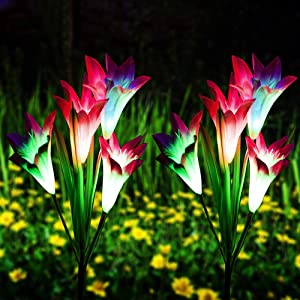 Qunlight Outdoor Solar Stake Flower Lights - 2 Pack Solar Powered Decorative Lights with 8 Lily Flower, Multi-Color Changing LED for Garden, Lawn,Patio, Pond,Backyard, etc(Purple 2pack)