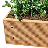 ECOgardener Premium Raised Bed Garden Planter Box 2' x 4' – The most beautiful elevated planter that will not crack, split, warp or break. Easy setup and maintenance free design.