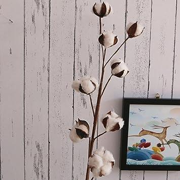 Anna-neek 8 Flores secas de Algodón Natural, Ramas de Algodón multicabeza, Decoración Creativa de Escritorio para el hogar: Amazon.es: Electrónica