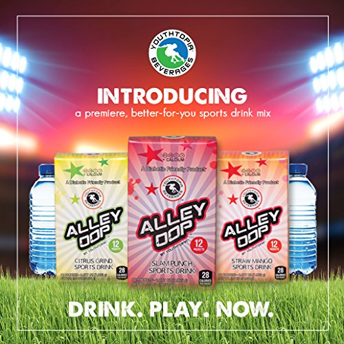 Carb Punch (ALLEY OOP HYDRATION POWDER STICK PACKS, 3.3 OZ 12 COUNT, DIABETIC FRIENDLY- SLAM-PUNCH (FRUIT PUNCH) DELICIOUS, LOW CARBS, LOW SUGAR, NO PRESERVATIVES, GLUTEN FREE, NON GMO, NO ARTIFICIAL FLAVORS OR COLORS, CAFFEINE FREE, ELECTROLYTES, VITAMINS B3, B5, C, D & CALCIUM)