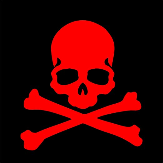 Ride Or Die Skull and Crossbones Car or Truck Window Laptop Decal Sticker