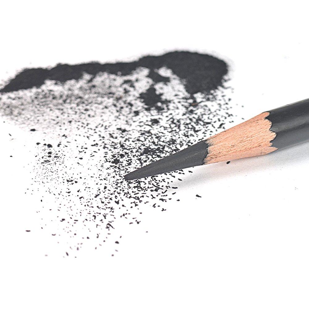 Looneng Sketch Charcoal Pencil 12PCS Sketching Drawing Blending Charcoal Pencils Set Soft