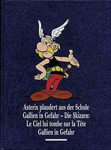Asterix Gesamtausgabe 12: Asterix plaudert aus der Schule, Gallien in Gefahr, Gallien in Gefahr - Die Skizzen Gebundenes Buch – 3. März 2016 René Goscinny Albert Uderzo Horst Berner Klaus Jöken