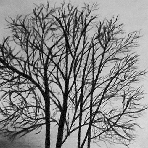 1 - 11x14 The Lake Shore - Autumn Charcoal Drawing - Original Fall Landscape Art - Woodland/Lake Home Decor - Halloween Art - Fine Art and Illustration - Gift Idea