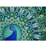 Birdfly 4Type Partial Drill Cross Stitch Kits 5D DIY Crystal Diamond Painting Kits for Adults Children (one, C)