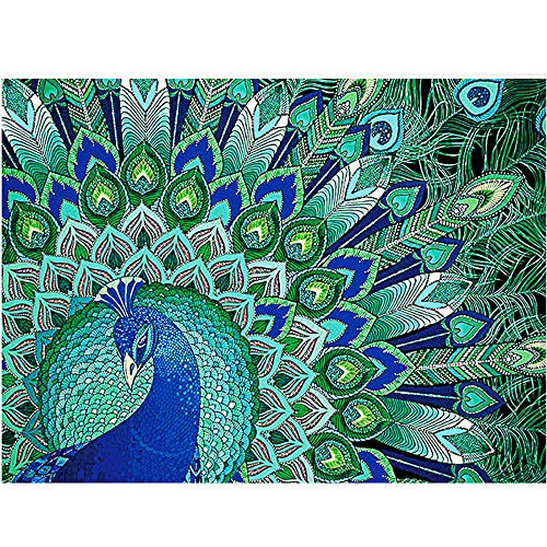 Birdfly 4Type Partial Drill Cross Stitch Kits 5D DIY Crystal Diamond Painting Kits for Adults Children (one, C) -
