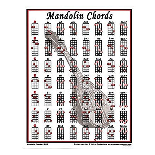 (Walrus Productions Mini Laminated Chart, Mandolin)