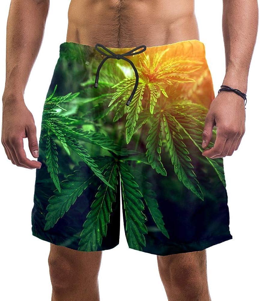 LORVIES - Bañador para hombre, diseño de hoja de marihuana en borroso Sunshine Cannabis Beach Board Shorts de secado rápido, talla L