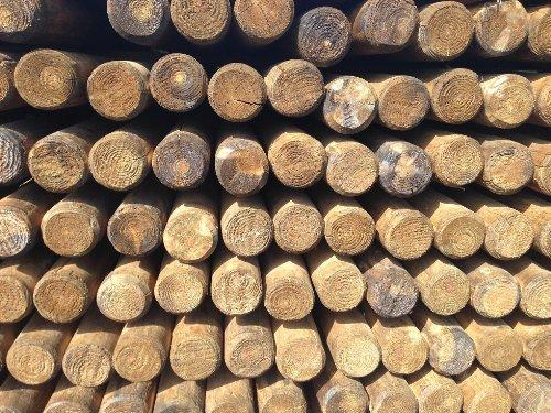 Pfähle Pfahl Baumpfähle Runde Holzpfosten Palisaden