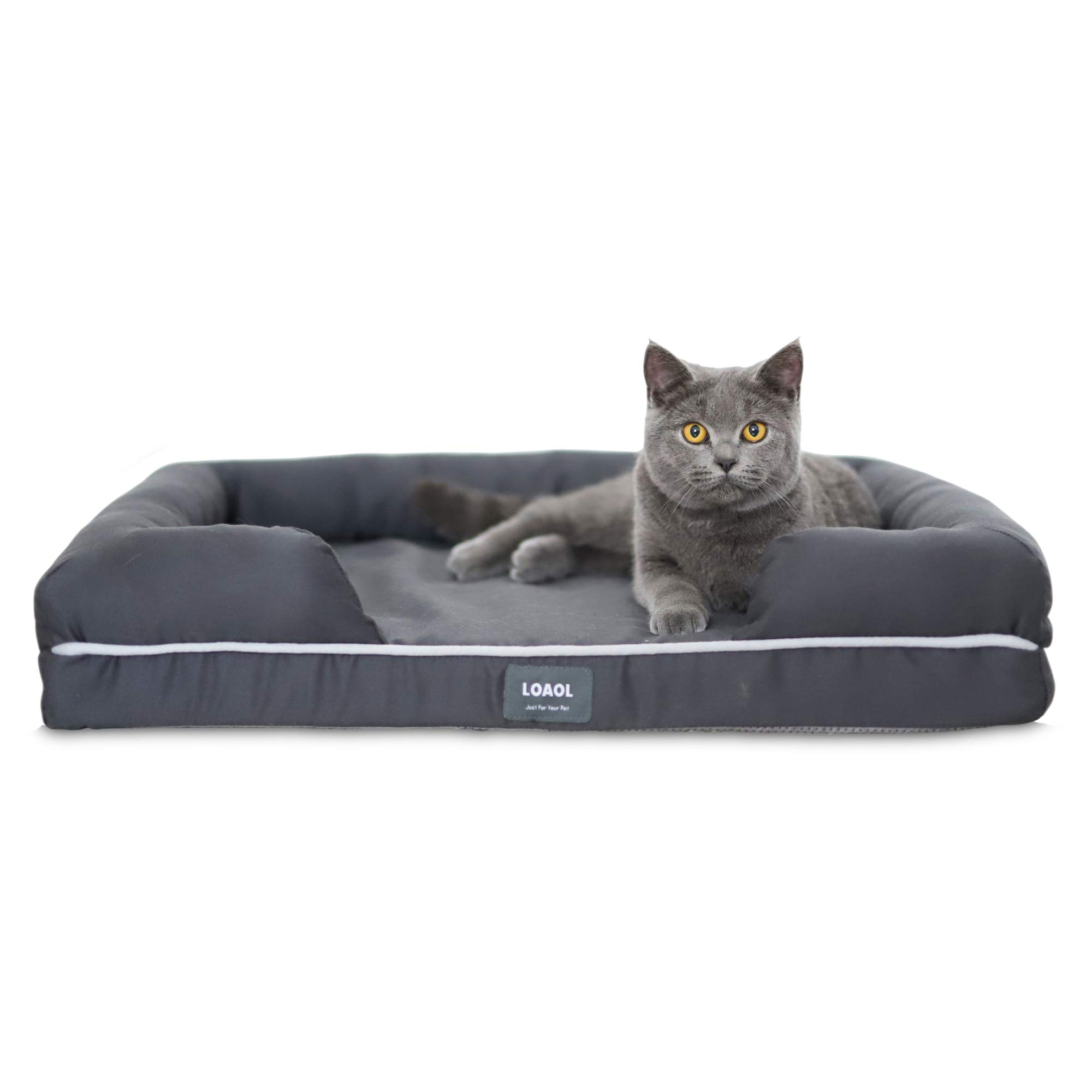 LOAOL 4''Durable Waterproof Memory Foam Pet Bed Mattress Orthopedic Dog Sofa Couch with Changeable Cover (M, Woven Gray)