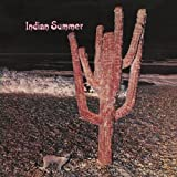 Indian Summer by INDIAN SUMMER (2011-05-31)