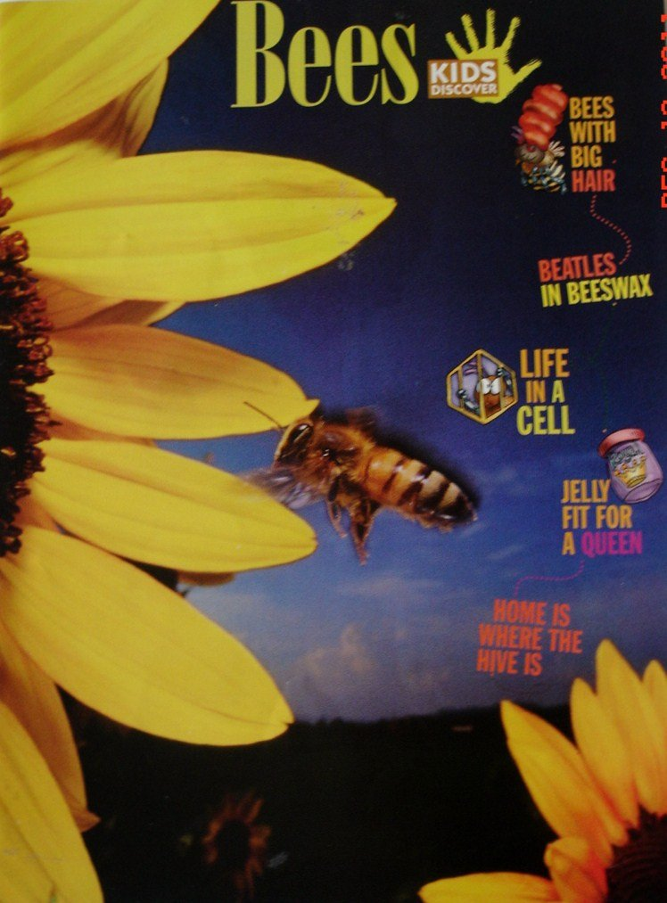 Kids Discover Magazine Bees Volume 15 Issue 7 (July 2005) Text fb2 book