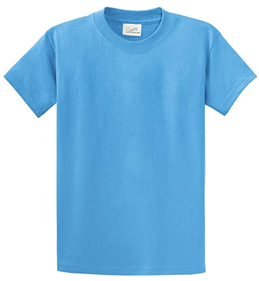 6338f18b9a19 Mens Heavyweight 6.1-Ounce, 100% Cotton T-Shirts in Regular, Big and ...