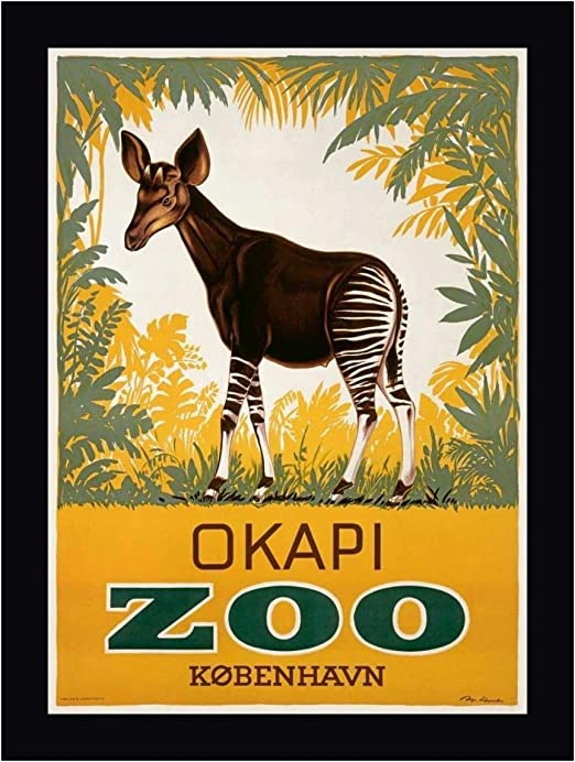 Art print POSTER CANVAS Okapi 2