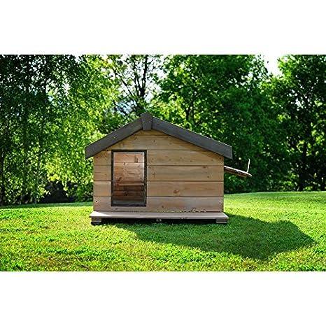 Caseta Everest Mini de madera con puerta lateral Limpieza cm. 141 x 88 x 89 cp06002: Amazon.es: Productos para mascotas