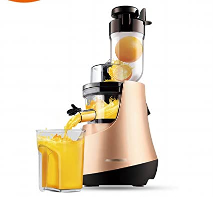 GCCI Juicer Casa con Fruta Automática Y Vegetales Multi - Funcionales de Gran Calibre Frito Jugo