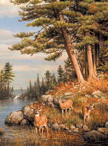 Buffalo Games - Hautman Brothers - Deer and Pines - 1000 Piece Jigsaw Puzzle