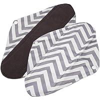 GLOGLOW 1PC Sanitary Reutilizable Paño Menstrual Almohadillas, Carbón Bambú Paño Menstrual Almohadillas Lavable Sanitario Toalla 5 Colores