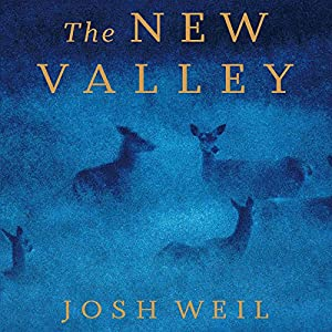 The New Valley Audiobook