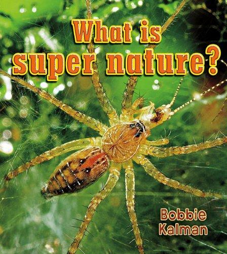 Download What Is Super Nature? (Big Science Ideas) pdf epub