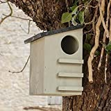 CKB Ltd Squirrel House Nesting Box Made from Pine Wood Outdoor Wildlife Shelter